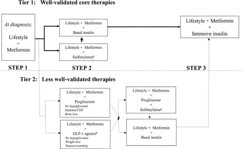 Current Standard of Care for Introducing Therapies including Insulin