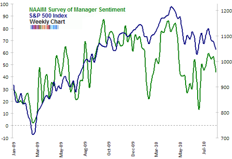NAAIM survey of manager sentiment Aug 2010