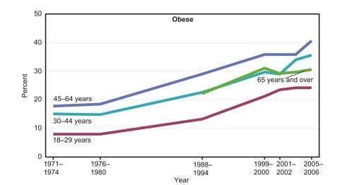Fast Food Obesity Adults US obesity rates have risenFast Food Obesity Adults