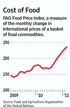 Increasing Price of Food