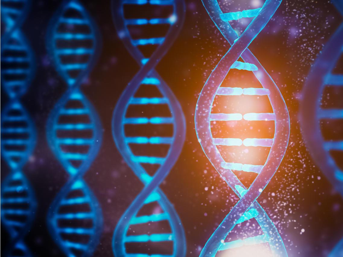 Bionano Genomics: Recent Pullback A Strong Buy Opportunity (NASDAQ:BNGO)    Seeking Alpha