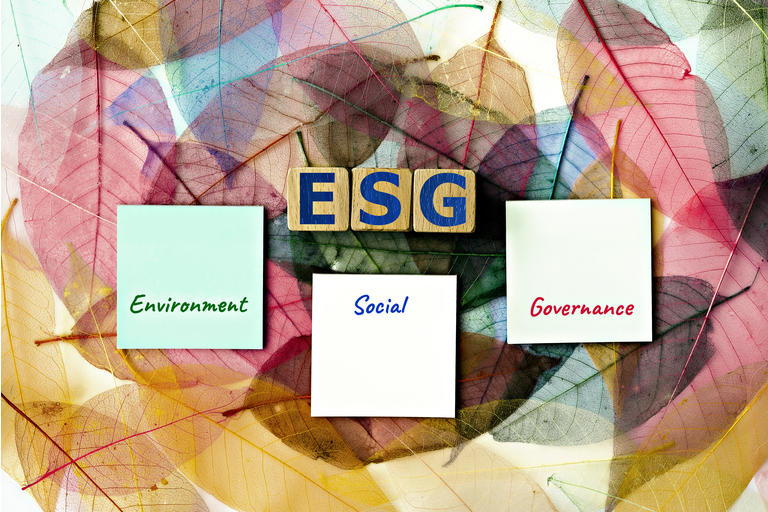 """photo on ESG (Environmental, Social, and Corporate Governance) theme. wooden cubes with the acronym """"ESG"""", and sticky notes, on the background of skeleton magnolia leaf"""