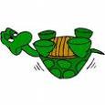turtle1663