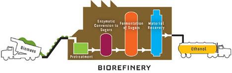 biofuel ethanol alternative to transportation essay