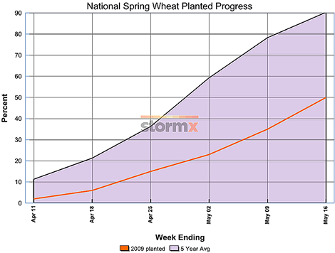 National Spring Wheat Planted Progress