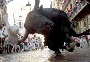 The Bull Market will return someday.