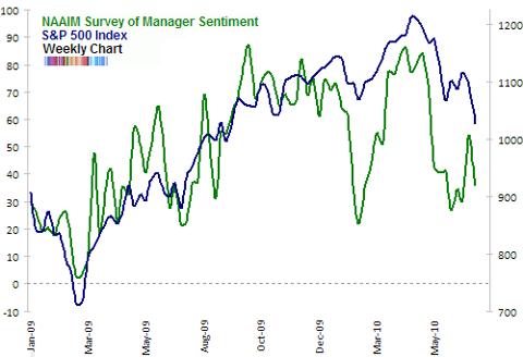 NAAIM survey of manager sentiment Jul 2010