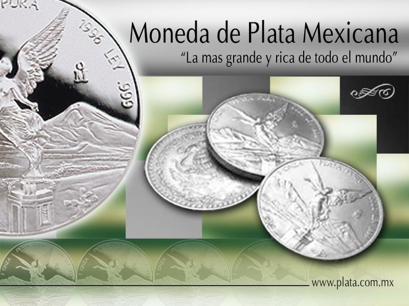 Asociación Cívica Mexicana Pro Plata A.C.