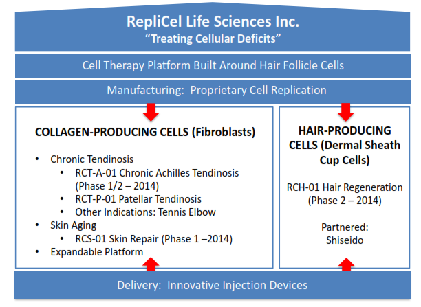 RepliCel Offers Significant Upside - RepliCel Life Sciences