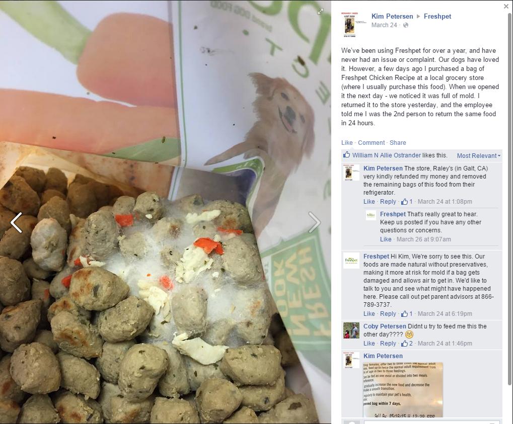 Image result for Moldy dog food