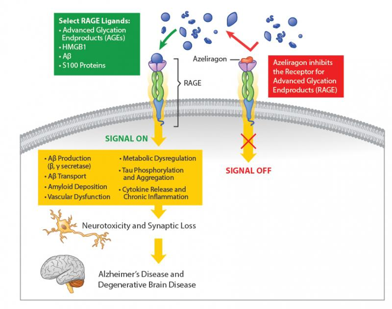 Searching For A Winner In The Alzheimer S Race Nasdaq Axon Old