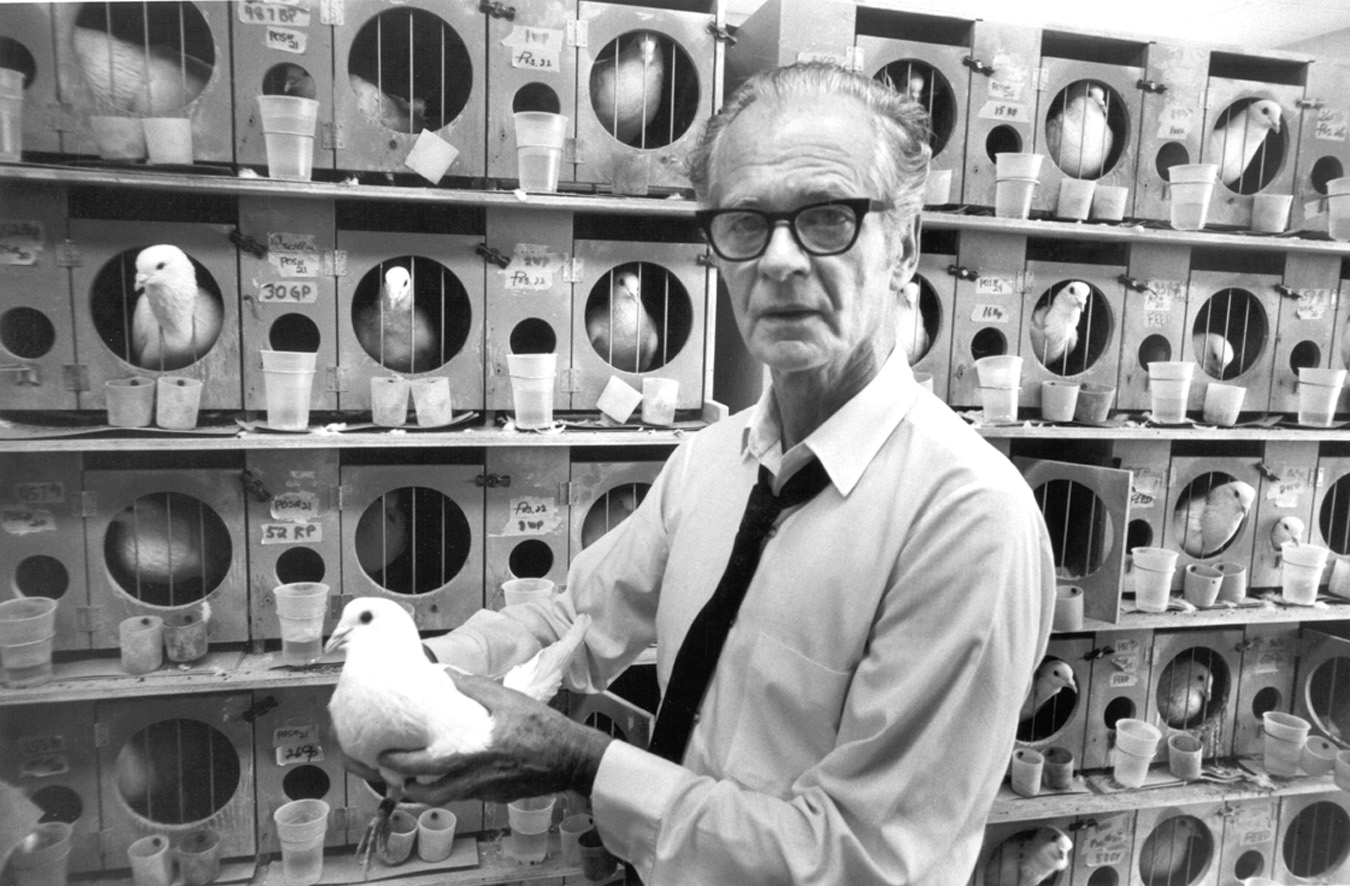 B.F. Skinner And The Psychology Of The Markets | Seeking Alpha