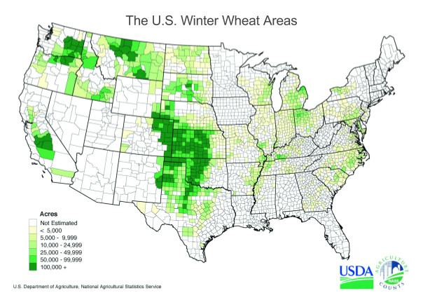 Weather Will Not Allow Wheat Price To Decrease IPath Pure Beta - Us map snow cover