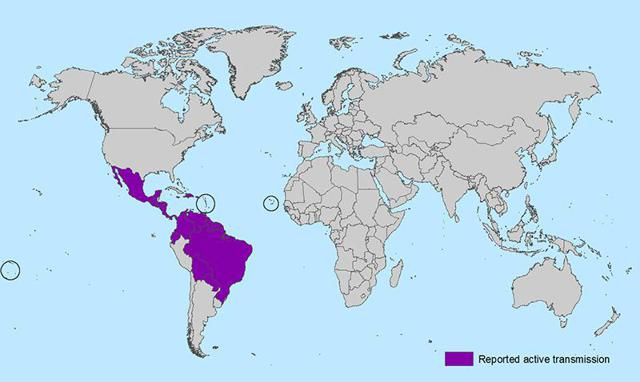 zika virus map 2016