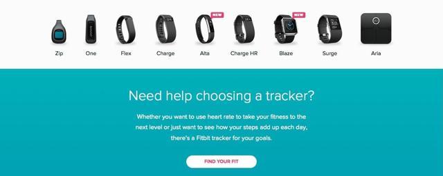Fitbit portfolio