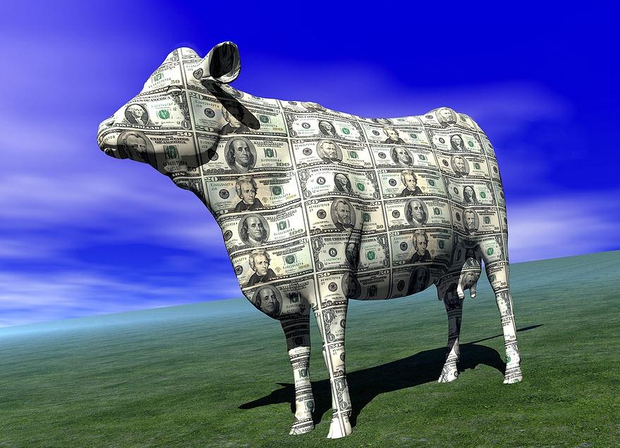 Ace payday loans gresham oregon image 5