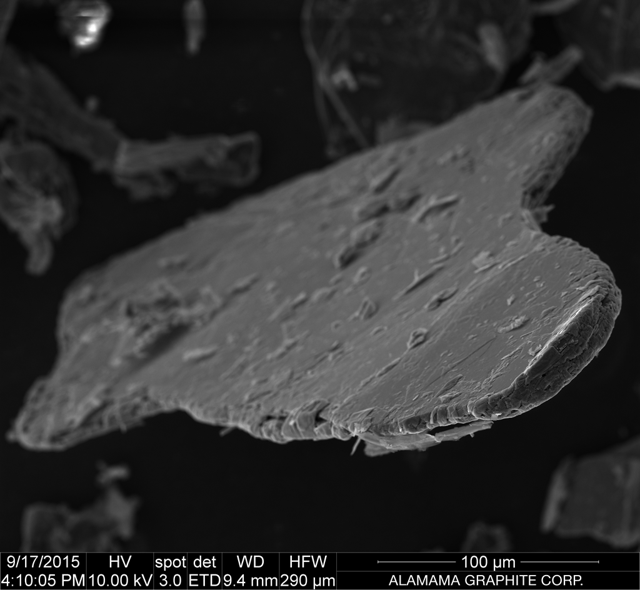 A scanning electron microscope (NYSE:<a href=