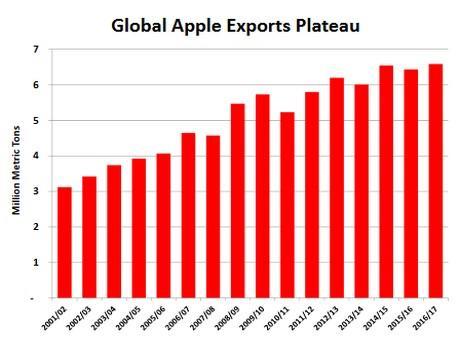 global apple exports