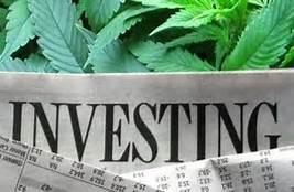 Marijuana Stocks: Growing Like A Weed?!