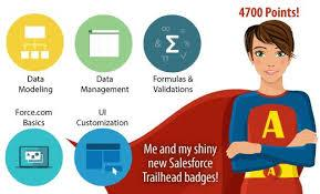 salesforce badge collector