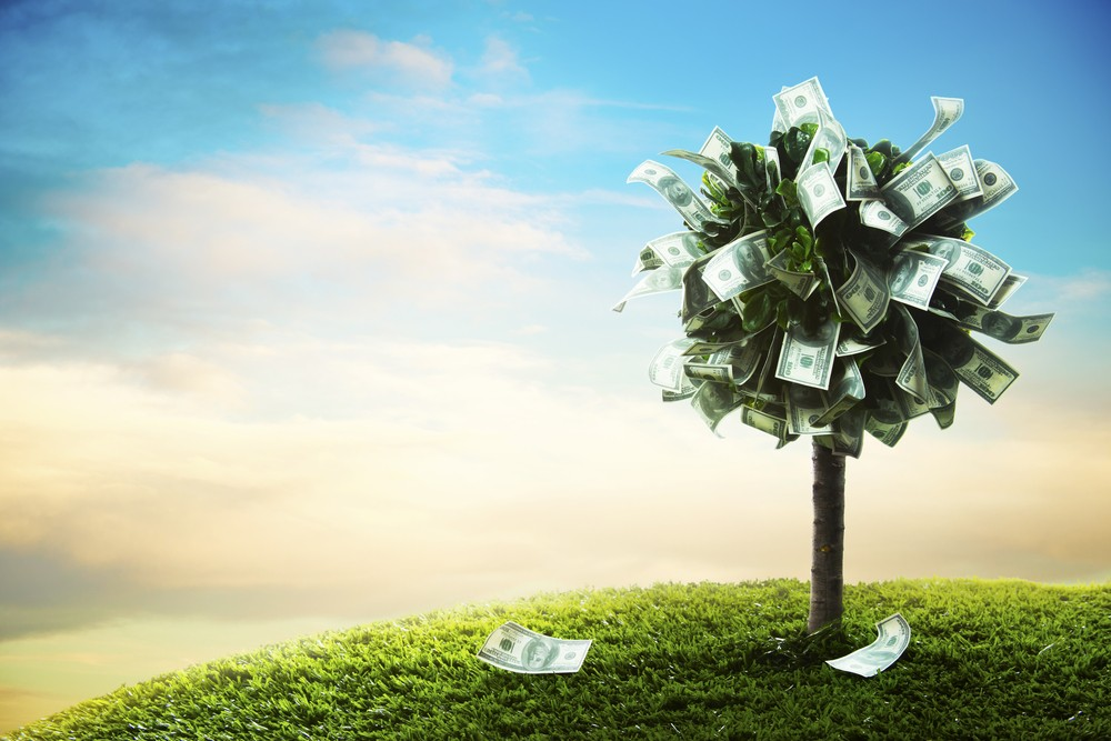 The Venture For The Future: Sustainable, Responsible And Impact Investing
