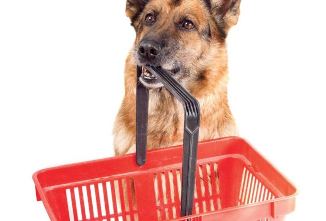 Pet food companies stocks
