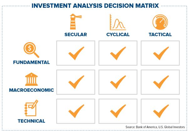 Investment analysis decision matrix