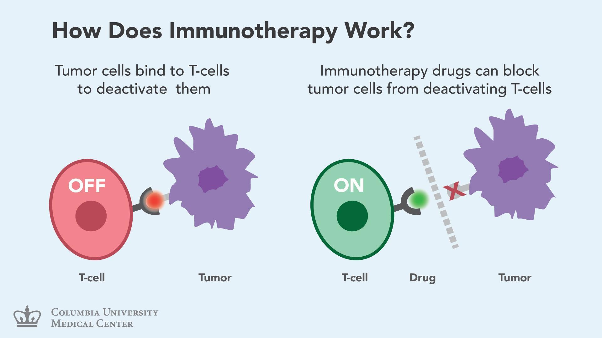 Immunotherapy Blockbuster Growth Potential Seeking Alpha