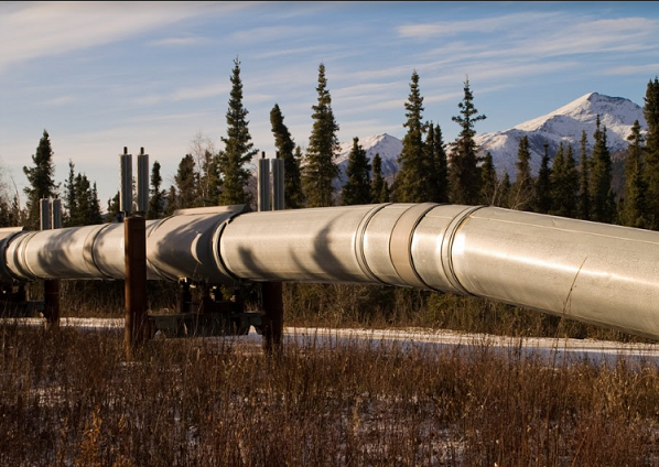Traders Watch List: Plains All American Pipeline, LP (NYSE:PAA)