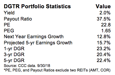 DGTR Portfolio Statistics