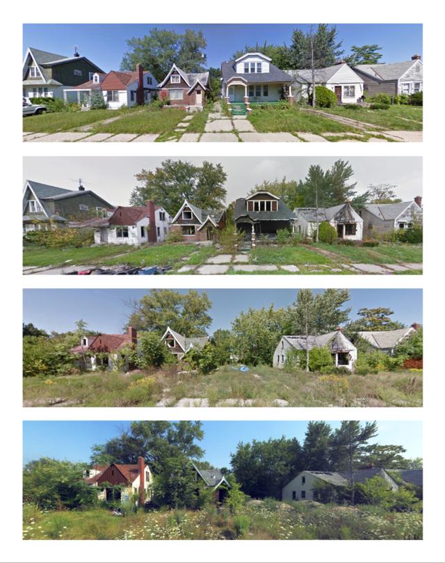Detroit housing collapse