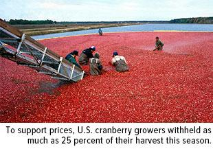 to support prices, U.S. cranberry growers withheld as much as 25 percent of their harvest this season