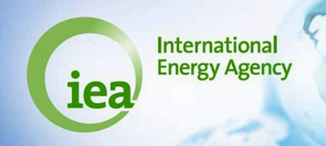 IEA logo from the website