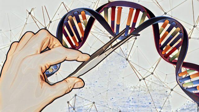 PrudentBiotech.com ~ Biotech Gene Editing - Feb 2018