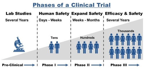 PHASES OF CLINICAL TRIALS - The University of Virginia