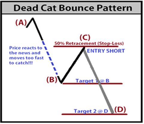 Image result for dead cat bounce stock market