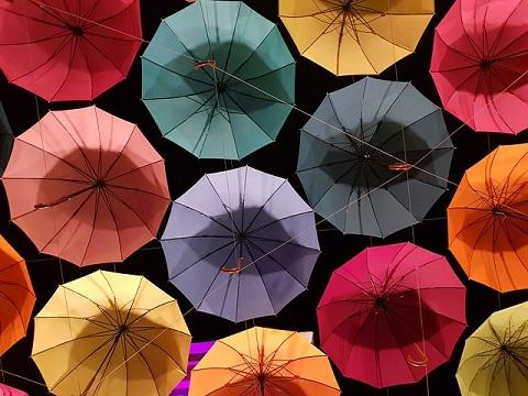 Diversification of Umbrella Colors