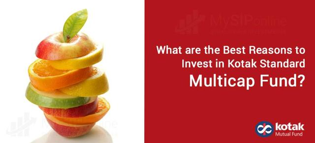 What are the Best Reasons to Invest in Kotak Standard Multicap Fund?