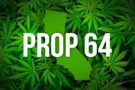 Image result for california legalization cannabis