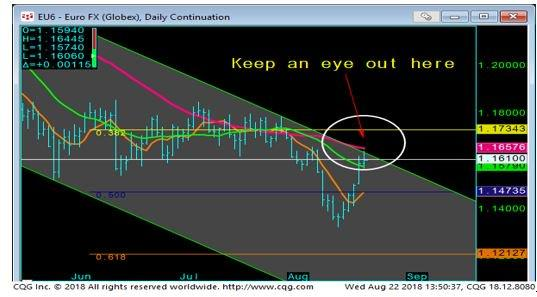 Euro FX Daily Chart