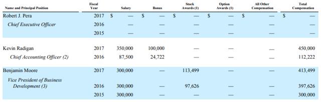 Ubiquiti management compensation