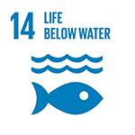 Green Bonds for Life below water SDG