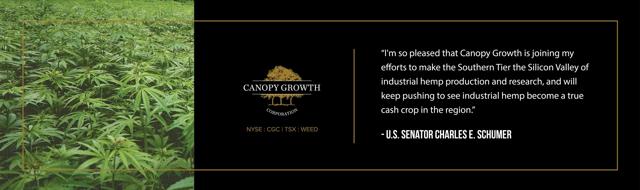 Canopy Growth kan de indringende indringer zijn die binnenvalt en de CBD-markt wegneemt na al het harde werk.
