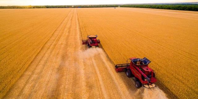 Elm Partners tax harvest