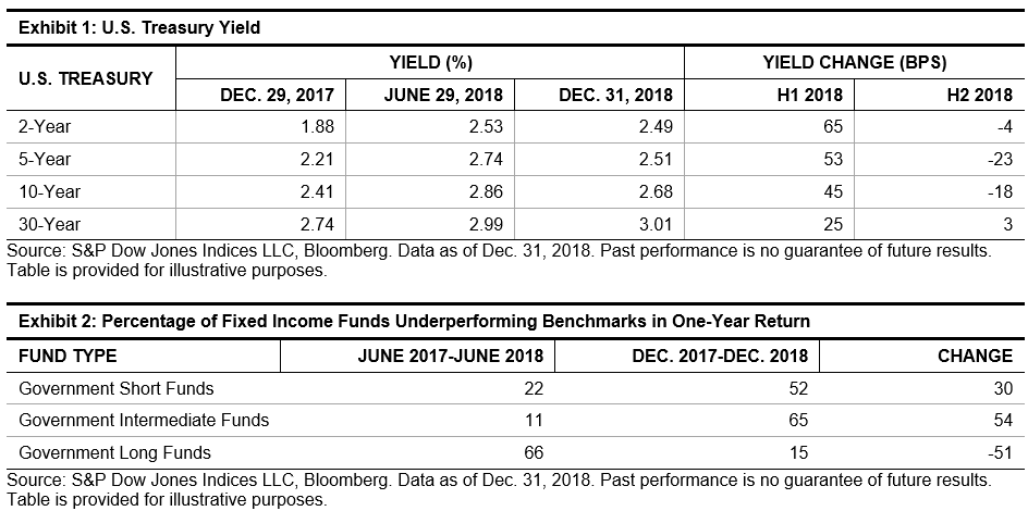 Market Conditions Favored Government Bond Funds In H2 2018