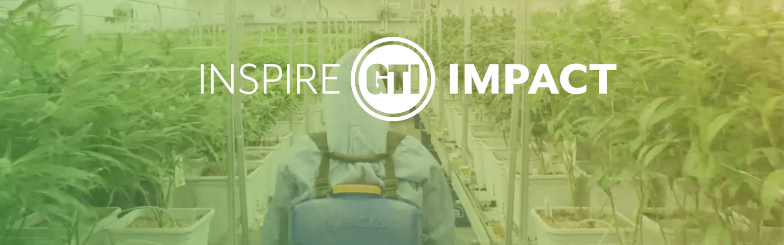 Green Thumb Industries: 278% Revenue Growth And Undervalued ...