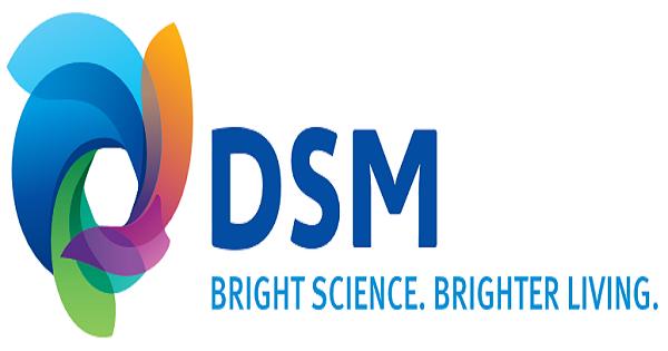 Afbeeldingsresultaat voor DSM