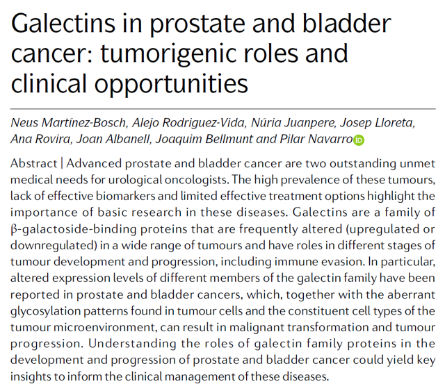 Galectins in prostate and bladder cancer: tumorigenic roles and clinical opportunities