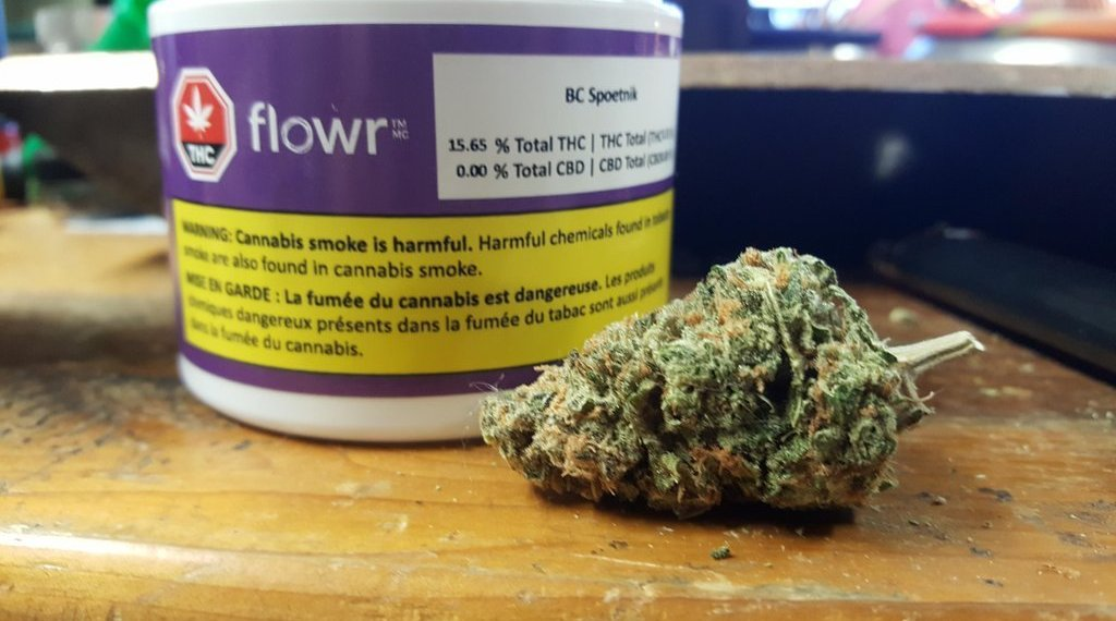 Flowr: Exposure To The Cannabis Market At A Fair Price