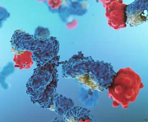 InflaRx, IFRX, monoclonal anti-body IFX-1 targeting C5a
